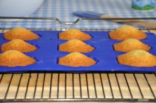 madeleines-backen-kekse-platzchen-rezepte-nachspeisen-franzosisch-kochen-by-aurelie-bastian
