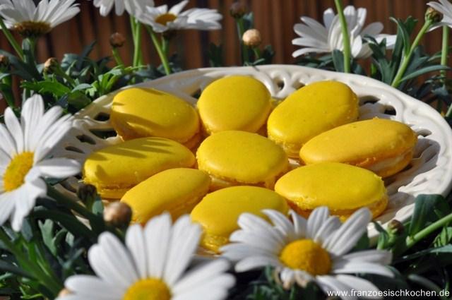macarons-a-la-rhubarbe-pour-paques-rhabarber-macarons-fur-ostern-backen-macarons-rezepte-nachspeisen-franzosisch-kochen-by-aurelie-bastian