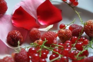tarte-du-jardin-fruits-et-fleurs-backen-rezepte-nachspeisen-tarte-franzosisch-kochen-by-aurelie-bastian
