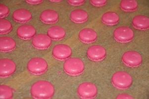 Rezept: Macarons für Anfänger (alles was Sie schon immer über Macarons wissen wollten)   www.franzoesischkochen.de