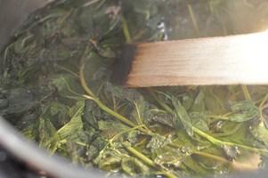 Sirop de menthe maison rezept franz sisch kochen for Kochen passieren