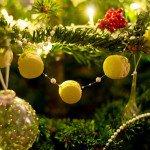 Macarons à la pistache ( Pistazien Macarons )