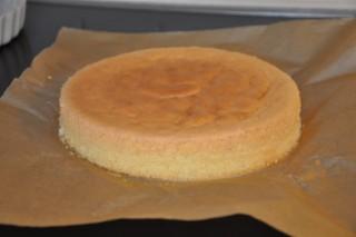 gateau-aux-framboises-et-biscuits-roses-de-reims-himbeertorte-mit-rosa-biskuits-aus-reims-dsc5062-320x200