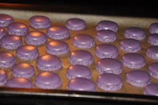 gateau-au-mocca-et-aux-macarons-pour-antje-moccamacaronstorte-fur-antje-dsc4999-320x200