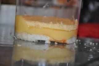 entremets-citronframboises-kleine-zitronenhimbeertorte-dsc5920-320x200