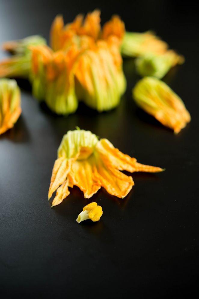 gefullte-zucchinibluten-fleurs-de-courgettes-farcies-dsc4788-kopie