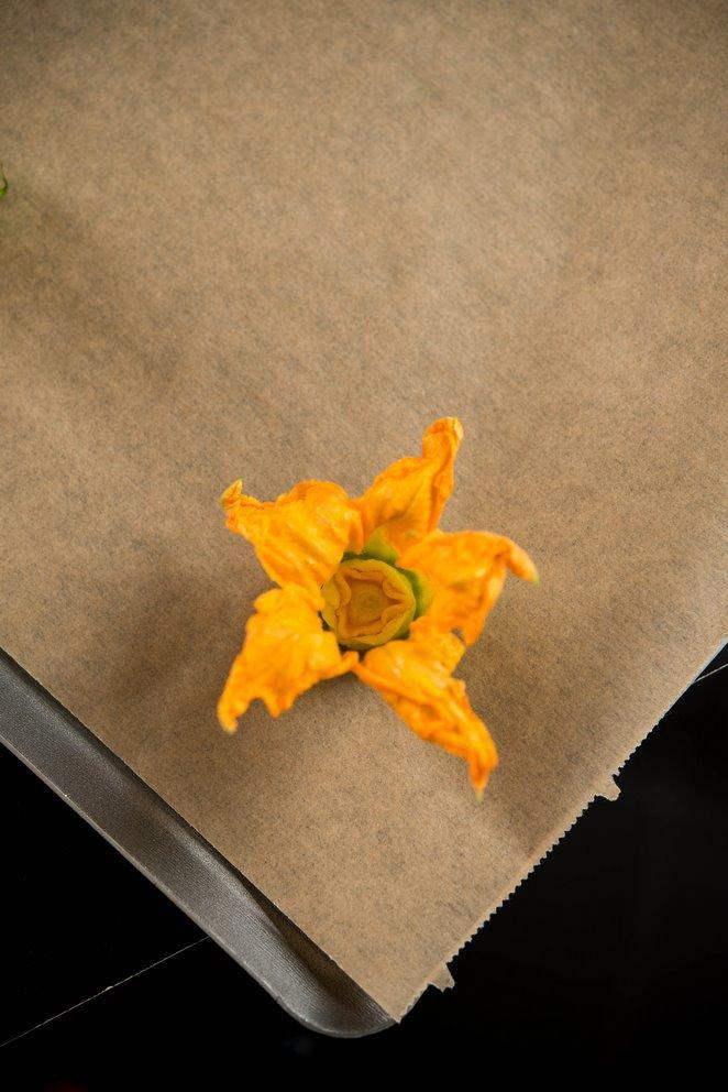 gefullte-zucchinibluten-fleurs-de-courgettes-farcies-dsc4813-kopie
