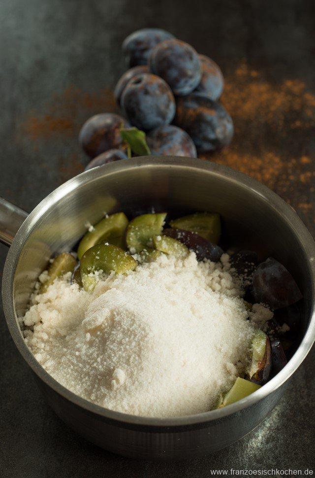 zucker-zimt--pflaumensorbet-sorbet-prunes--cannelle-dsc9005-kopie
