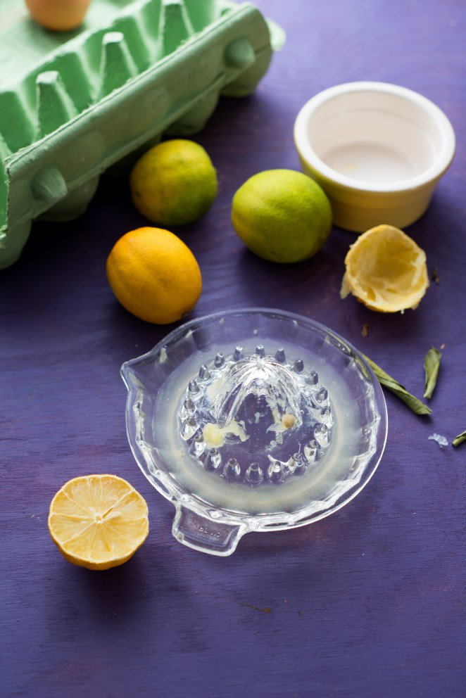 extra-zitroniger-zitronenkuchen-gateau-tout-citron